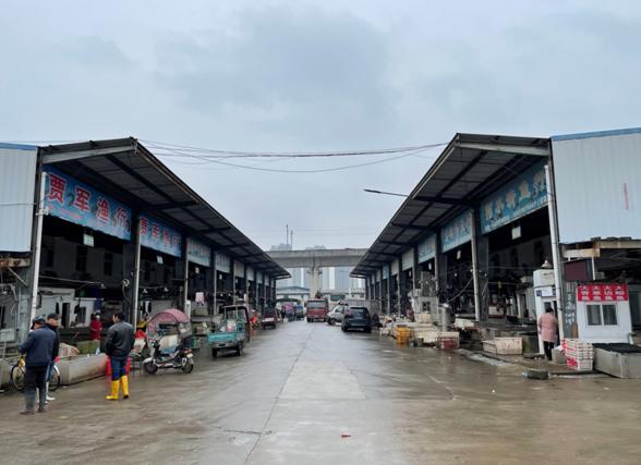 图为武汉四季美农贸城中的水产市场。很多华南海鲜批发市场的老商户都搬到这里继续经营。  范凌志摄