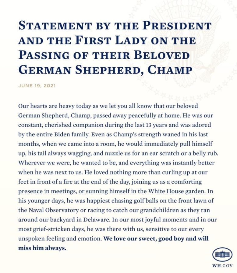 拜登宣布其心爱的德国牧羊犬去世,蔡英文吊唁,被骂惨了……插图(1)
