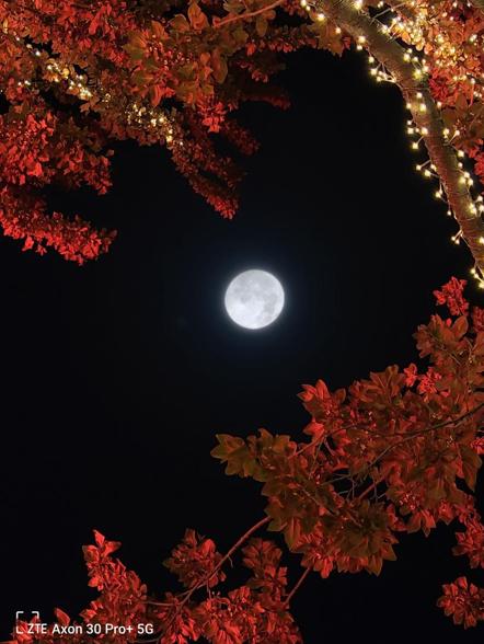 超级月亮Ultra模式样张