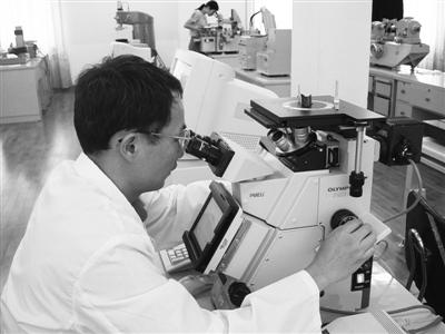 龙溪轴承公司检测人员对关节轴承基体材料进行显微组织分析 受访者供图